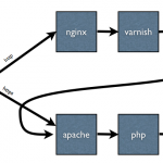Install nginx as a reverse proxy cPanel plugin