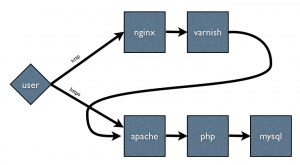 nginx varnish