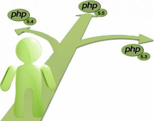 multiple php version